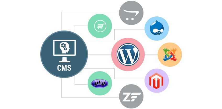 Dedicated Web Developers Ask Online Solutions